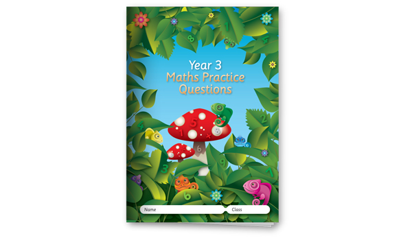Year 3 Maths Practice Questions
